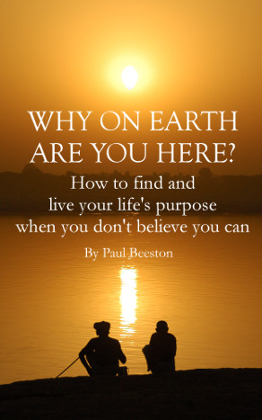 Why on Earth are You Here? By Paul Beeston